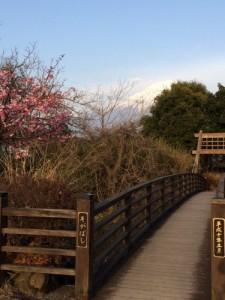 白糸の滝橋
