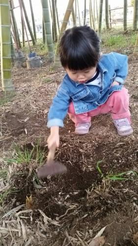 竹の子掘りしてきました!!