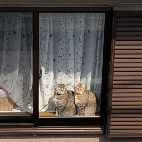 ★お知らせ★