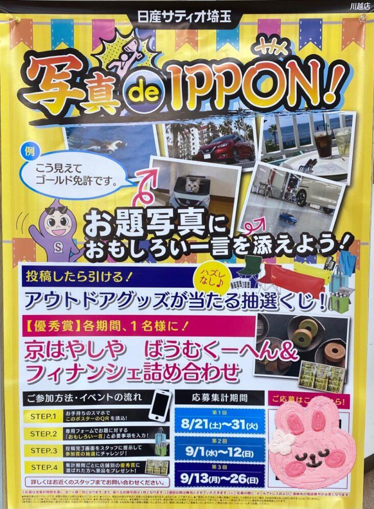 夏の大感謝祭 ✨写真 de IPPON!!✨